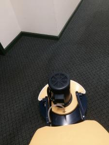carpet maintenance